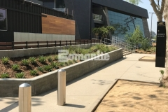 Utilizing Bomanite Sandscape Texture decorative concrete, Bomel Construction Company created these stunning pedestrian entrances and walkways around the LAFC Banc of California Stadium, adding a durable hardscape surface with consistent texture that blends beautifully with the existing landscape.